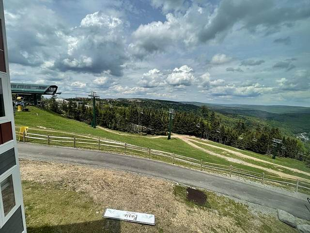 75 Mountain Lodge #244, SNOWSHOE, WV 26209 (MLS #21-889) :: Greenbrier Real Estate Service