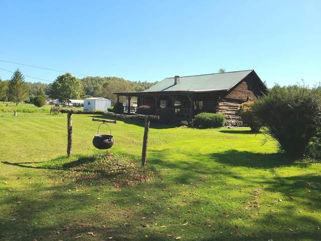 14054 Pocahontas Trl, White Sulphur Springs, WV 24986 (MLS #21-897) :: Greenbrier Real Estate Service