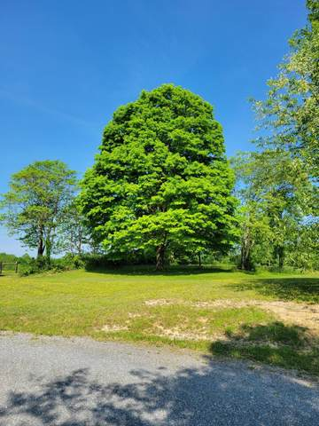 45 W Mt Lookout Rd, Mt Lookout, WV 26678 (MLS #21-905) :: Greenbrier Real Estate Service