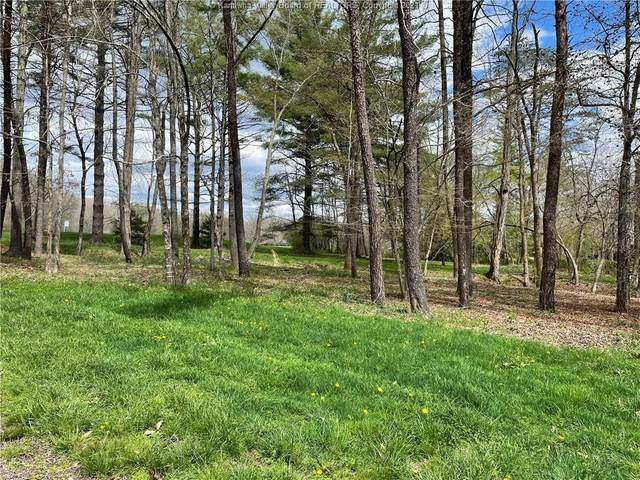 452 Village Run Rd, White Sulphur Springs, WV 24986 (MLS #21-925) :: Greenbrier Real Estate Service