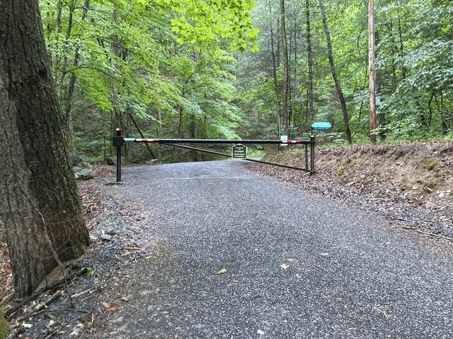 Lot 17 Overlook At Gbr Phase 2, White Sulphur Springs, WV 24925 (MLS #21-934) :: Greenbrier Real Estate Service
