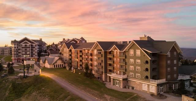 30 Highland House #208, SNOWSHOE, WV 26209 (MLS #21-940) :: Greenbrier Real Estate Service