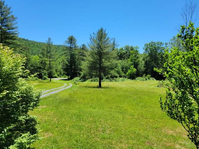 21775 Pocahontas Trl, White Sulphur Springs, WV 24986 (MLS #21-963) :: Greenbrier Real Estate Service