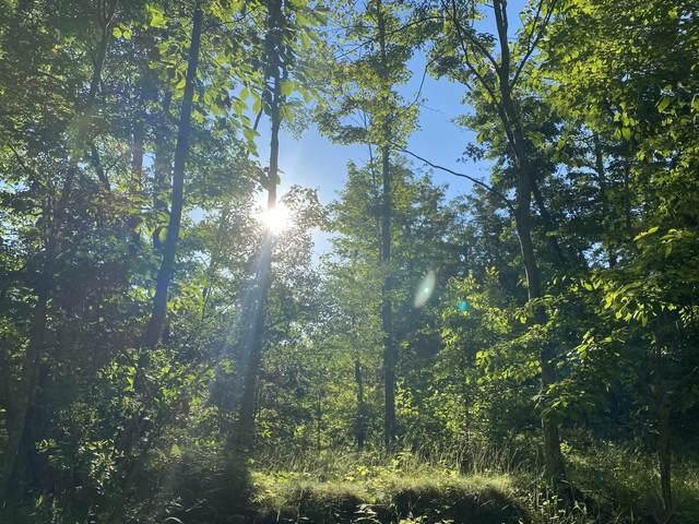 Brushy Ridge Road, WILLIAMSBURG, WV 24991 (MLS #21-972) :: Greenbrier Real Estate Service