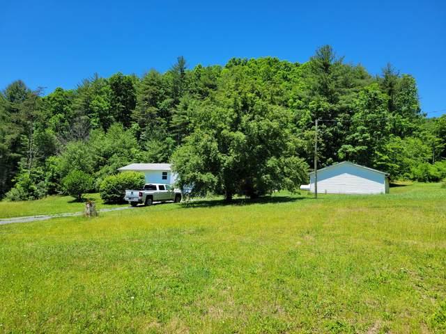 21775 Pocahontas Trl, White Sulphur Springs, WV 24986 (MLS #21-973) :: Greenbrier Real Estate Service