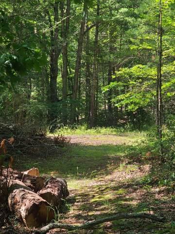 0005 Bear Wallow Hallow:, WAITEVILLE, WV 24984 (MLS #21-982) :: Greenbrier Real Estate Service