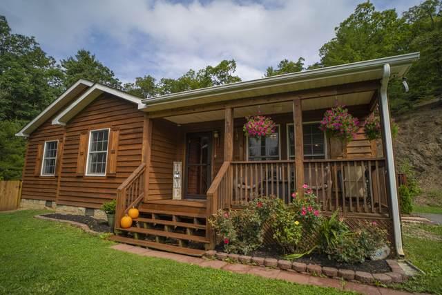 165 Sleepy Hollow Ln, White Sulphur Springs, WV 24986 (MLS #21-1445) :: Greenbrier Real Estate Service