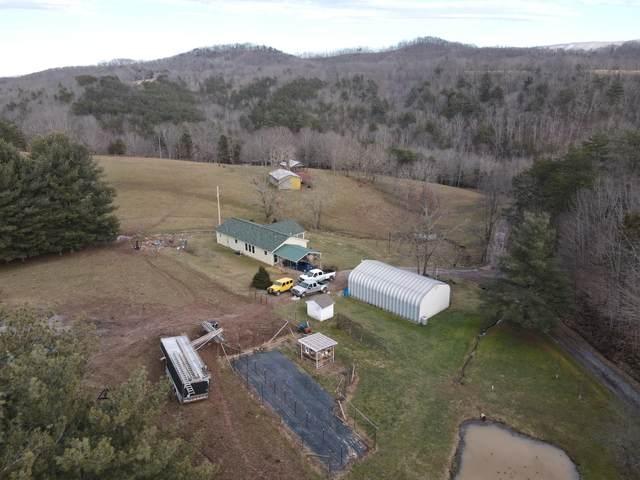 190 Possum Tail Ridge, LINDSIDE, WV 24951 (MLS #21-267) :: Greenbrier Real Estate Service
