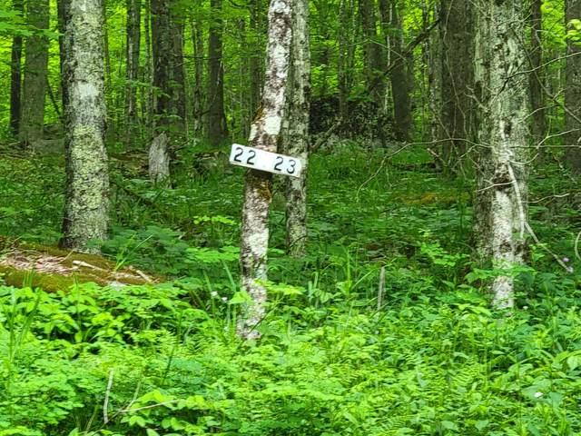 Lot 23 Eagles Nest, SNOWSHOE, WV 26209 (MLS #21-455) :: Greenbrier Real Estate Service