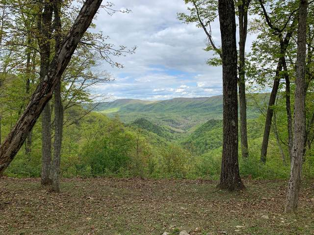 Lot 128 Withrow Landing, The Retreat, CALDWELL, WV 24925 (MLS #21-495) :: Greenbrier Real Estate Service