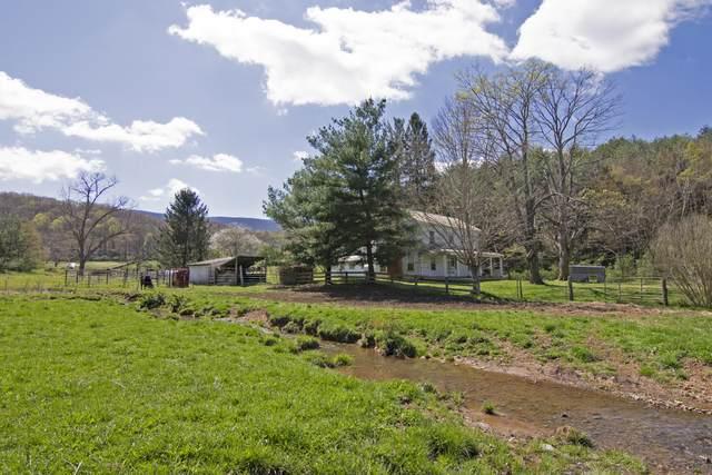 623 Dunkard Church Road, LINDSIDE, WV 24951 (MLS #21-514) :: Greenbrier Real Estate Service