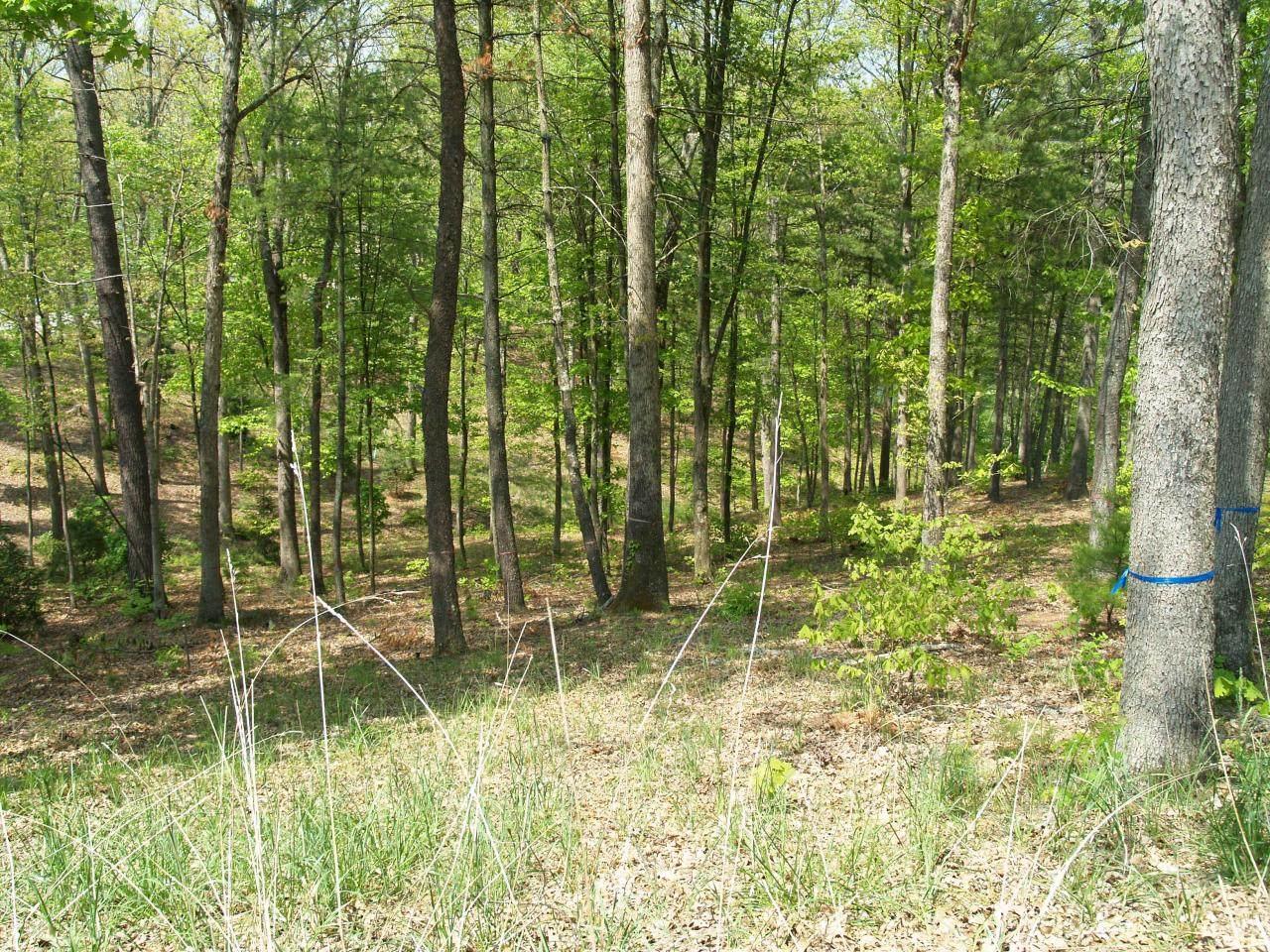 278 Deer Wood Circle - Photo 1