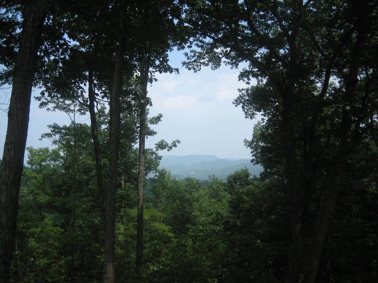 358 Summit Village Trail - Photo 1