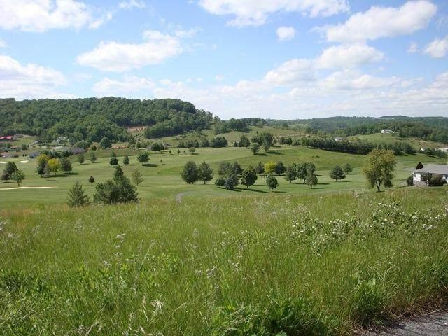 Fairway View Drive, PETERSTOWN, WV 24963 (MLS #19-381) :: Greenbrier Real Estate Service