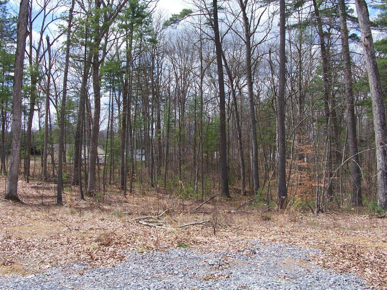 Lot 19 Woodhaven Subdivision - Photo 1