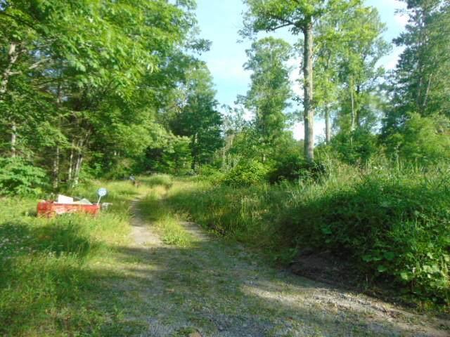 62 Anjean Rd, RUPERT, WV 25984 (MLS #21-1038) :: Greenbrier Real Estate Service