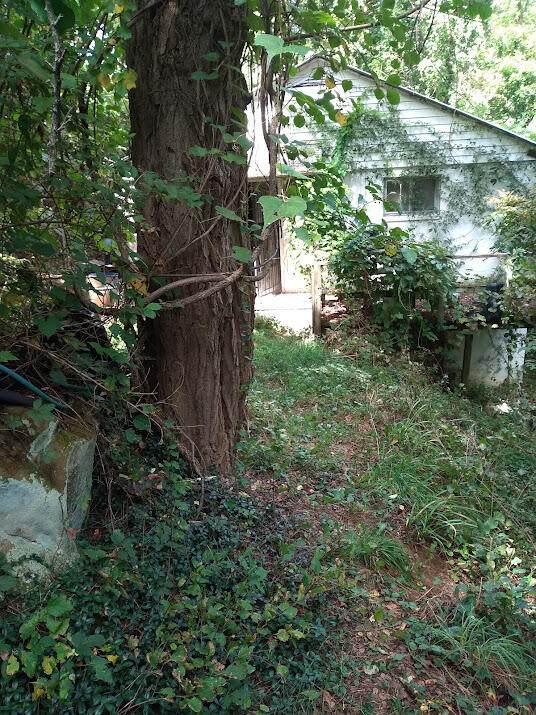143 Mirror Ln, PRINCETON, WV 24740 (MLS #21-1496) :: Greenbrier Real Estate Service