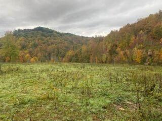 Brushy Meadow Crk, Leivasy, WV 26676 (MLS #21-1562) :: Greenbrier Real Estate Service