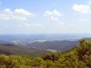 12 Little Mountain - Photo 1