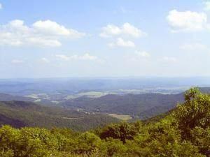 16 Little Mountain - Photo 1