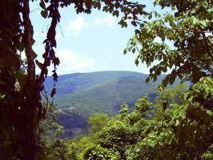 8 Little Mountain - Photo 1