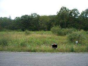 127 The Meadows Lane, SLATYFORK, WV 26291 (MLS #21-969) :: Greenbrier Real Estate Service
