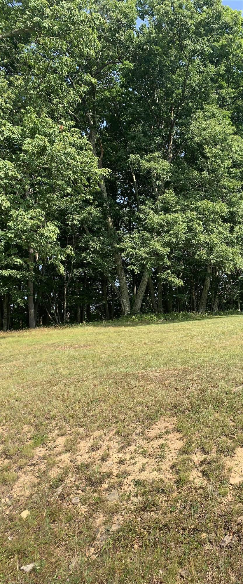 18 Woods Run - Photo 1