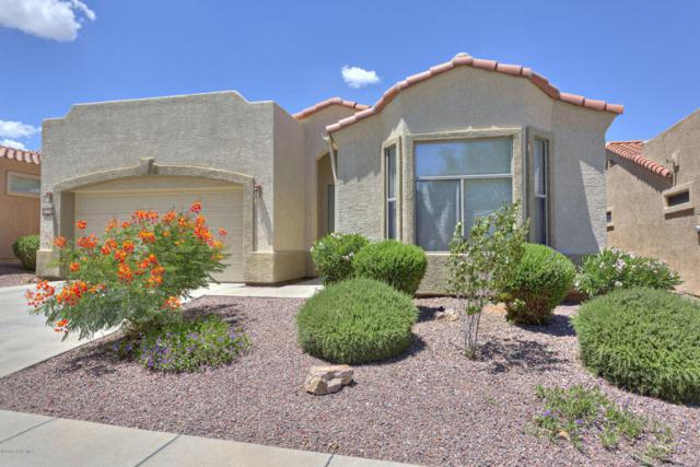 668 W Shadow Wood Street, Green Valley, AZ 85614 (#61065) :: Long Realty Company