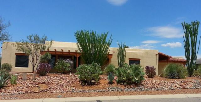 771 E Armor Springs Place, Green Valley, AZ 85614 (#61067) :: Long Realty Company