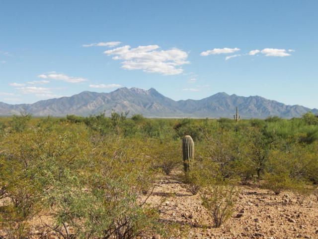 172 N Rustic Ridge, Green Valley, AZ 85614 (#61402) :: Long Realty Company