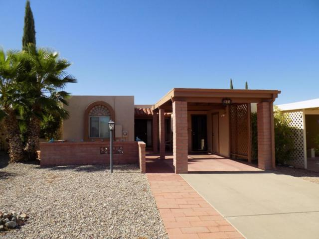 373 N Calle De Las Profetas, Green Valley, AZ 85614 (#61418) :: Long Realty Company