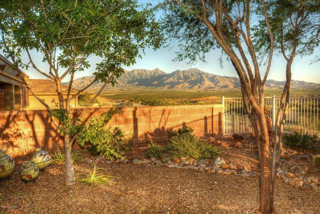 2049 W Cactus Run Drive, Green Valley, AZ 85622 (#61939) :: Long Realty Company
