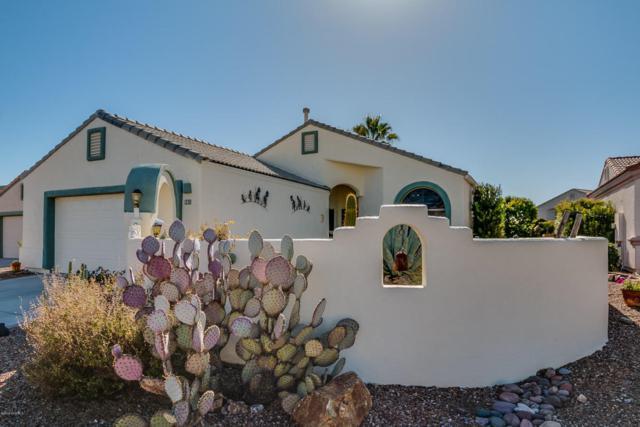 561 W Links Lane, Green Valley, AZ 85614 (#61970) :: Long Realty Company