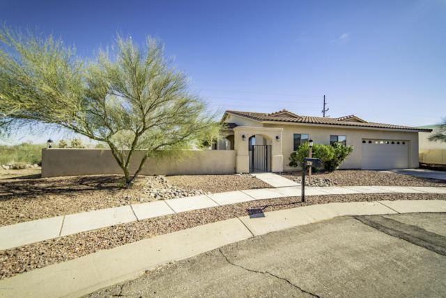 445 S Avenida De Las Sabinas, Green Valley, AZ 85614 (#61976) :: Long Realty Company