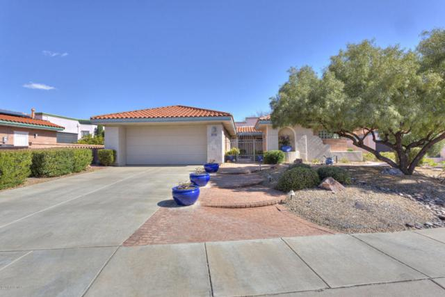 3983 S Via Del Picamaderos, Green Valley, AZ 85622 (#62211) :: Long Realty Company