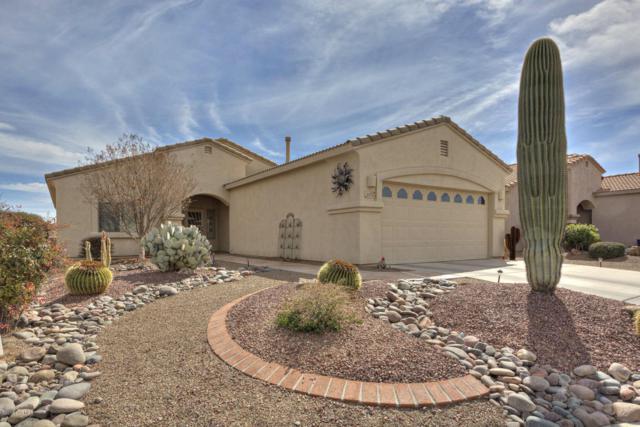 2271 S Pecan Vista, Green Valley, AZ 85614 (#62551) :: Long Realty Company