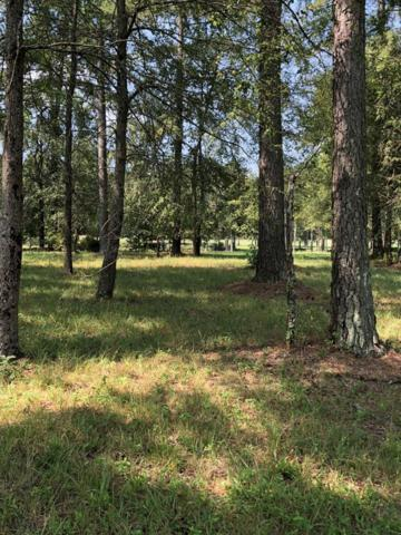 112 Stagecoach Court, Ninety Six, SC 29666 (MLS #116102) :: Premier Properties Real Estate