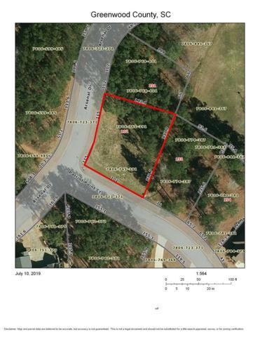 101 Patriot Point Court, Ninety Six, SC 29666 (MLS #117682) :: Premier Properties Real Estate