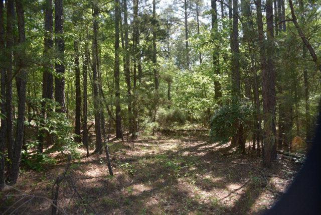 0 Indian Mound Road, Laurens, SC 29360 (MLS #112092) :: Premier Properties Real Estate