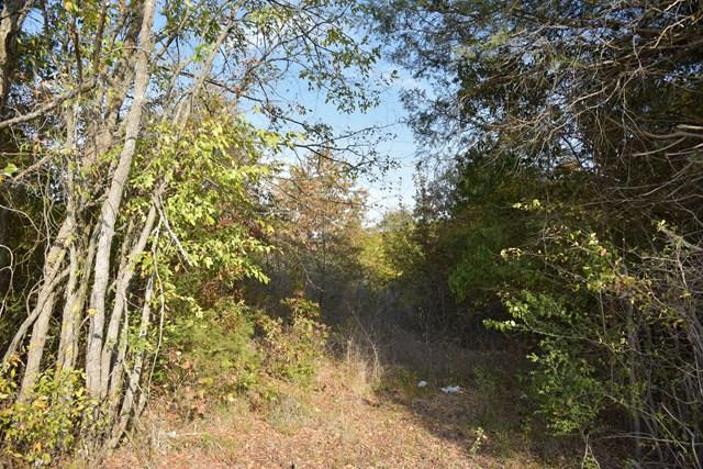 00 Broadwell, Calhoun Falls, SC 29693 (MLS #113025) :: Premier Properties Real Estate