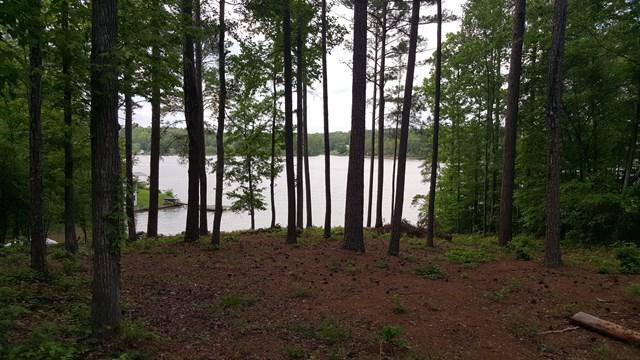 606 SE Sand Shore Dr., Greenwood, SC 29646 (MLS #113800) :: Premier Properties Real Estate