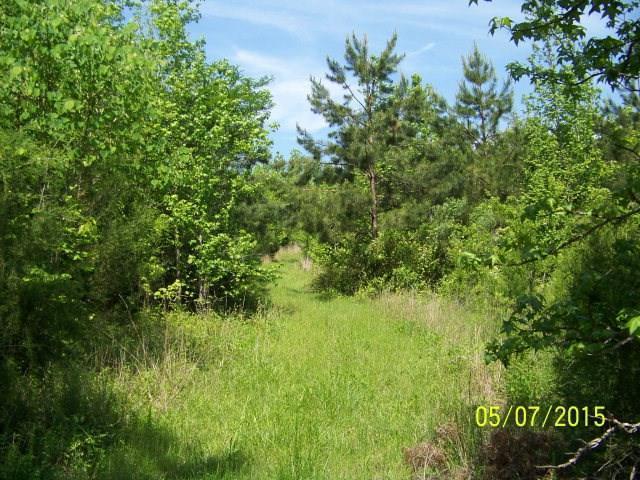 00 W Hwy 71 @ Bulls Horne Rd., Abbeville, SC 29620 (MLS #114069) :: Premier Properties Real Estate