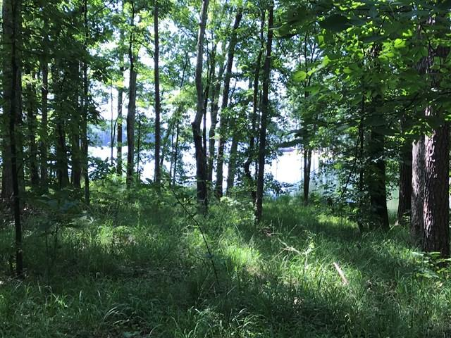 Lot 36 Longshot, Cross Hill, SC 29332 (MLS #114181) :: Premier Properties Real Estate