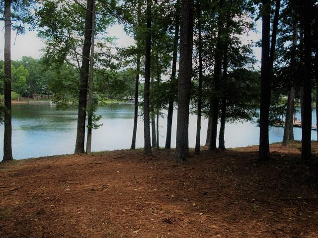 Lot 20 Cabin Cove, Cross Hill, SC 29332 (MLS #114367) :: Premier Properties Real Estate