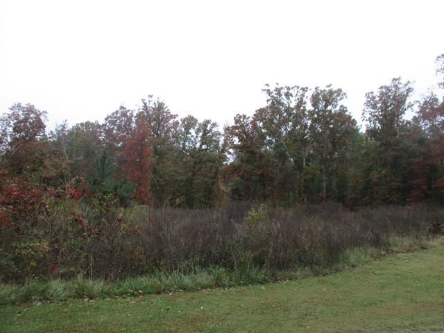 Lt 113 Rivers Way, Abbeville, SC 29620 (MLS #114710) :: Premier Properties Real Estate