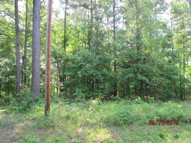 000 Lot 20 & 21 Edgewater Rd, Waterloo, SC 29384 (MLS #114823) :: Premier Properties Real Estate