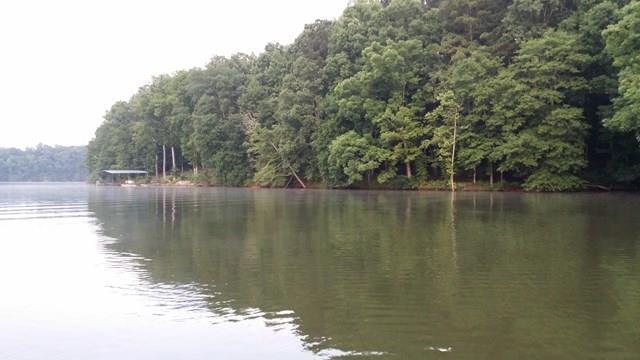 38 Lake, Iva, SC 29655 (MLS #114833) :: McClendon Realty