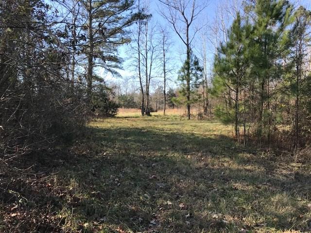 --- Hwy 28    95.37 Acres, Abbeville, SC 29620 (MLS #114890) :: Premier Properties Real Estate
