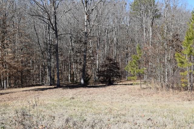 110 Cane Ct, Greenwood, SC 29649 (MLS #114985) :: Premier Properties Real Estate