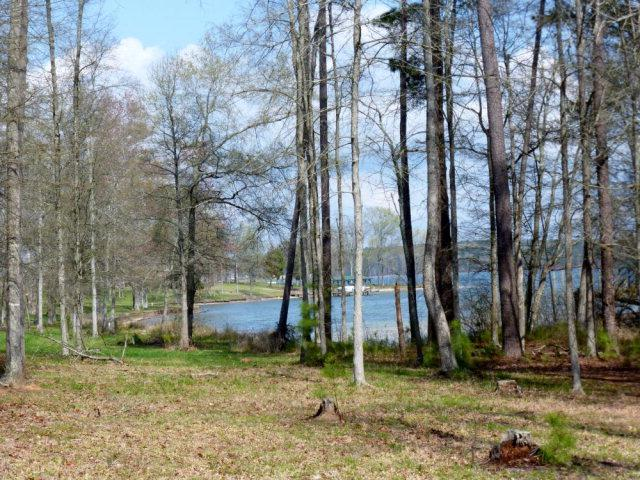 124 Sassafras Blvd (Lot 63), Ninety Six, SC 29666 (MLS #115028) :: Premier Properties Real Estate